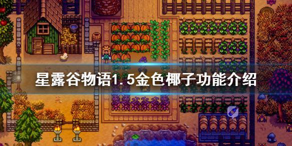 《星露谷物语》1.5金色椰子有什么用 1.5金色椰子功能介绍