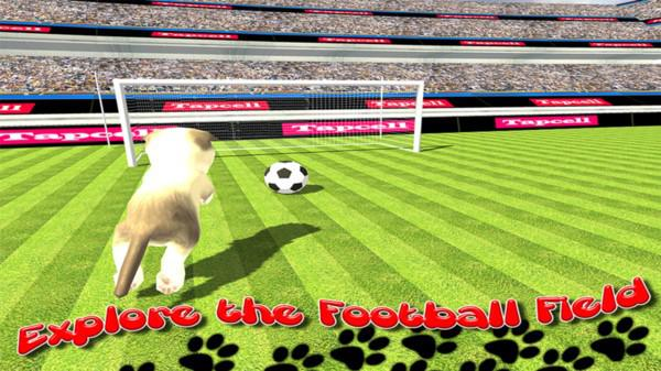 猫咪运动会游戏截图(3)